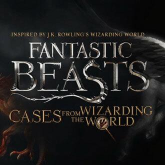 caseswizardingworld.jpg